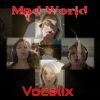 Nieuwe Single Vocalix : Mad World !